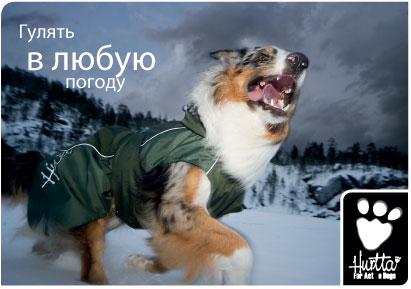 Защитите Вашу собаку от дождя ,ветра,грязи и холода!