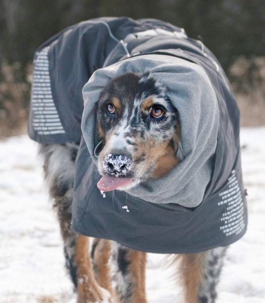 Тёплая куртка-попона Hurtta Extreme Warmer