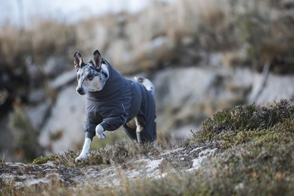 Тёплая одежда для собак Hurtta Extreme Overall